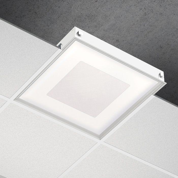 Primo 2X2 square Grid