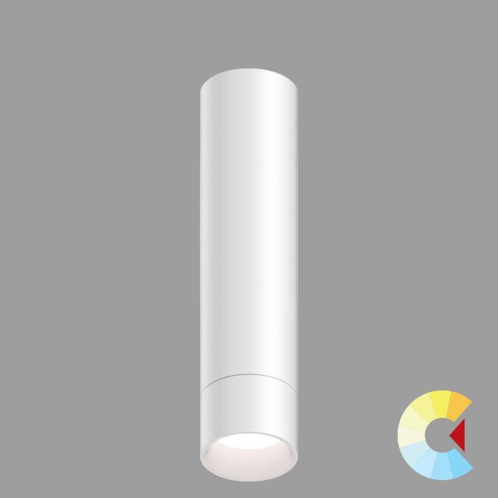 Voila 2 Cylinder<br/>Surface