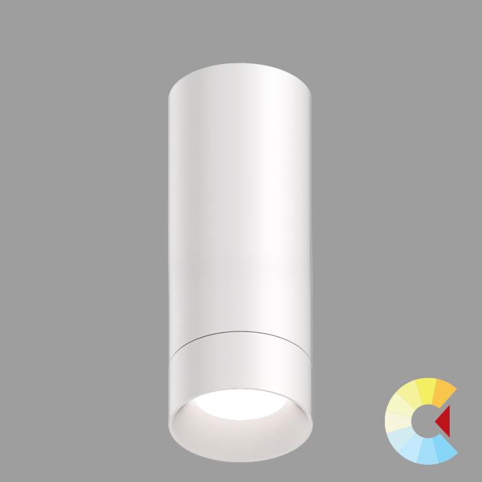 Voila 4 Cylinder<br/>Surface
